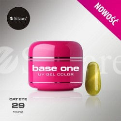 BASE ONE CAT EYE MANX 5g *29