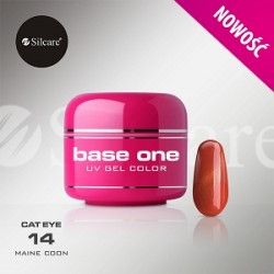 BASE ONE CAT EYE MAINE COON 5g *14